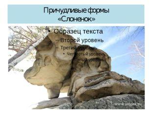Причудливые формы «Слоненок»