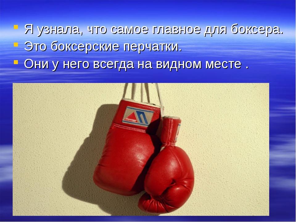 Я узнала, что самое главное для боксера. Это боксерские перчатки. Они у него...