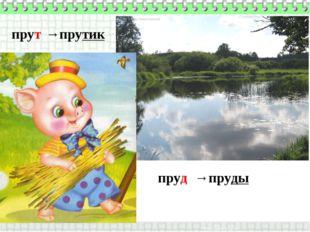 пруд прут →пруды →прутик
