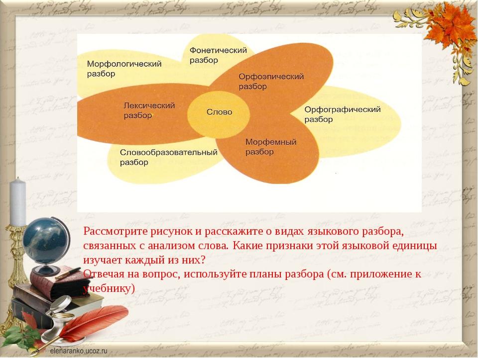 Рассмотрите рисунок и расскажите о видах языкового разбора, связанных с анали...