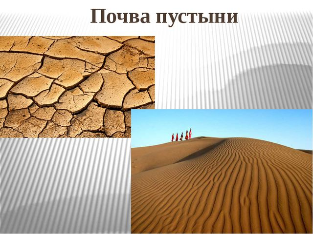 Почва пустыни