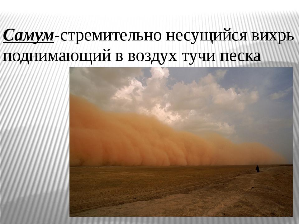 Самум-стремительно несущийся вихрь поднимающий в воздух тучи песка