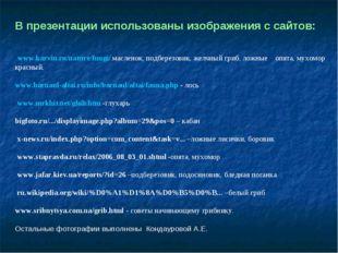 В презентации использованы изображения с сайтов: www.karvin.ru/nature/fungi/
