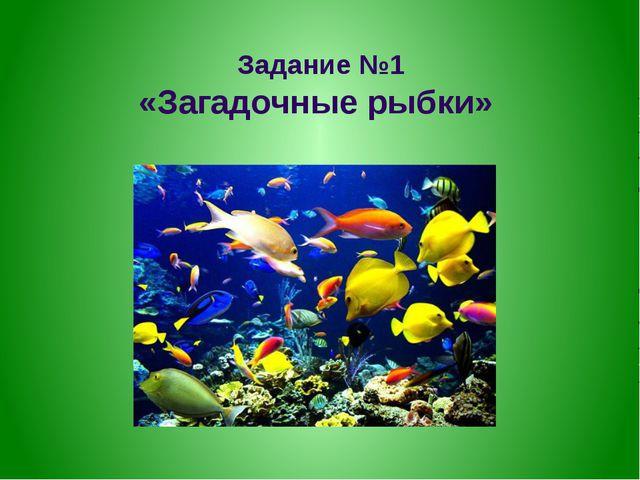 Задание №1 «Загадочные рыбки»