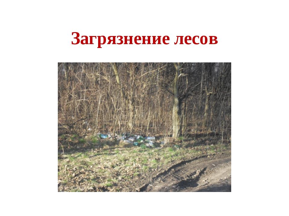 Загрязнение лесов
