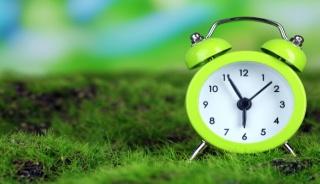 http://s1.1zoom.ru/big0/292/Clock_Closeup_Grass_441948.jpg