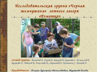 Исследовательская группа «Черная жемчужина» летнего лагеря «Ромашка» Состав г