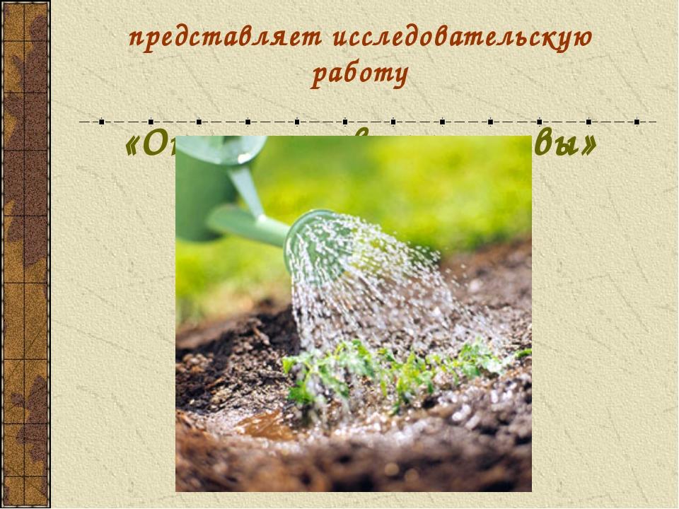 представляет исследовательскую работу «Окультуривание почвы»