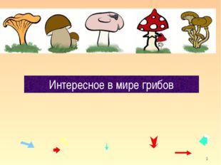 * Интересное в мире грибов кафедра педагогики и технологий образовательного п
