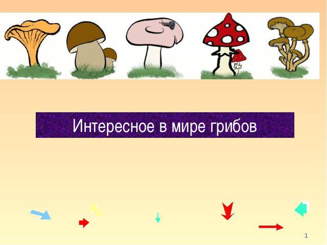 * Интересное в мире грибов кафедра педагогики и технологий образовательного п...