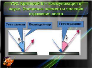 УЭ2. Критерий В – коммуникация в науке. Основные элементы явления отражения с