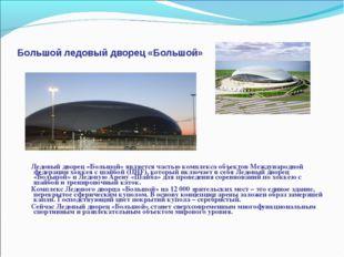 Большой ледовый дворец «Большой» Ледовый дворец «Большой» является частью ком