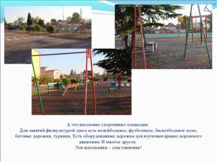 А это школьные спортивные площадки. Для занятий физкультурой здесь есть волей