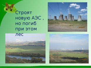 Строят новую АЭС , но погиб при этом лес