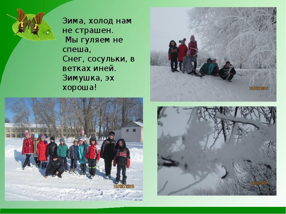 Зима, холод нам не страшен. Мы гуляем не спеша, Снег, сосульки, в ветках ине...
