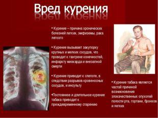 Курение – причина хронических болезней легких, эмфиземы, рака легкого Курени