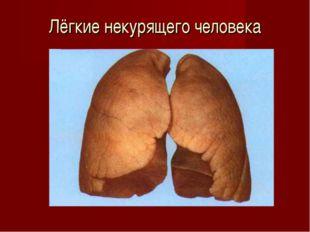 Лёгкие некурящего человека