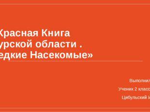 «Красная Книга Курской области . Редкие Насекомые» Выполнил Ученик 2 класса