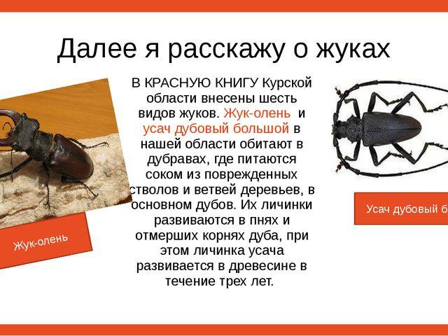 Далее я расскажу о жуках В КРАСНУЮ КНИГУ Курской области внесены шесть видов...