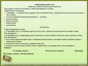 Лабораторная работа №6. «Действие слюны на питательные вещества» Цель работы: