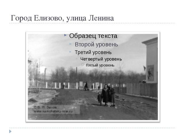 Город Елизово, улица Ленина