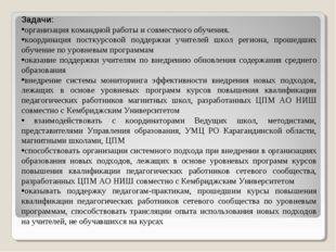 Задачи: организация командной работы и совместного обучения. координация пост
