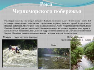 Реки Черноморского побережья Реки берут начало высоко в горах Большого Кавказ