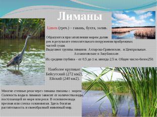 Лиманы Limen (греч.) – гавань, бухта, залив. Образуются при затоплении морем