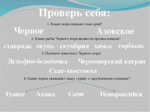 Проверь себя: 1. Какие моря омывают наш край? Черное Азовское 2. Какие рыбы Ч