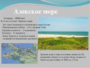 Азовское море Площадь – 38000 км2. В 11 раз уступает Черному морю. Это самое