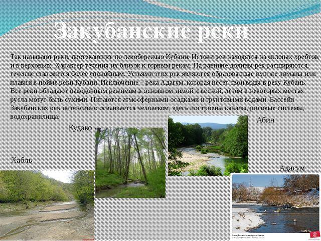 Закубанские реки Так называют реки, протекающие по левобережью Кубани. Истоки...