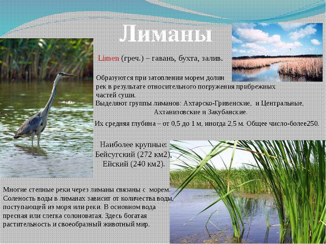 Лиманы Limen (греч.) – гавань, бухта, залив. Образуются при затоплении морем...