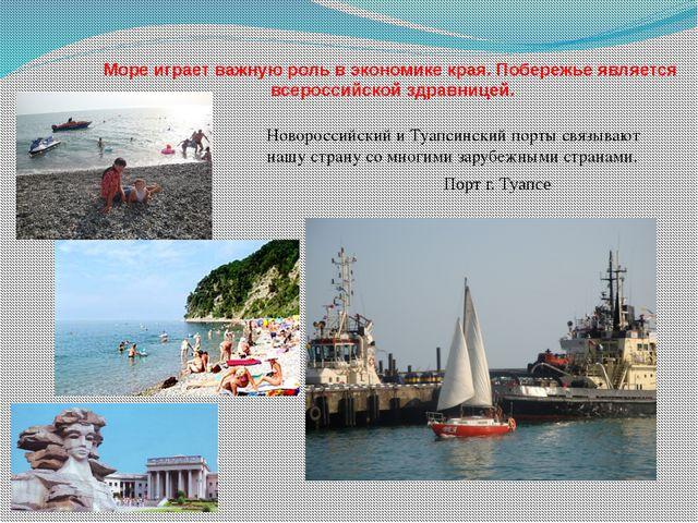 Море играет важную роль в экономике края. Побережье является всероссийской зд...