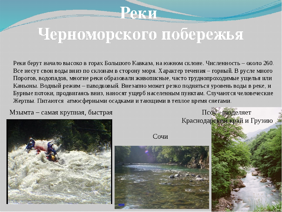 Реки Черноморского побережья Реки берут начало высоко в горах Большого Кавказ...