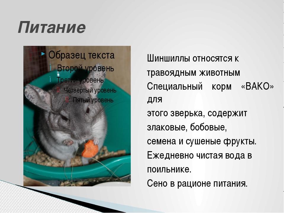 Шиншиллы относятся к травоядным животным Специальный корм «ВАКО» для этого зв...