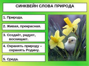 СИНКВЕЙН СЛОВА ПРИРОДА 5. Среда. 4. Охранять природу – охранять Родину. 3. Со