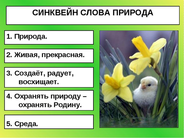 СИНКВЕЙН СЛОВА ПРИРОДА 5. Среда. 4. Охранять природу – охранять Родину. 3. Со...