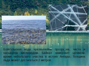 Байкальская вода чрезвычайно прозрачна, чиста и насыщена кислородом. Байкал з