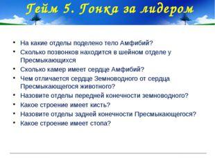 Гейм 5. Гонка за лидером На какие отделы поделено тело Амфибий? Сколько позво