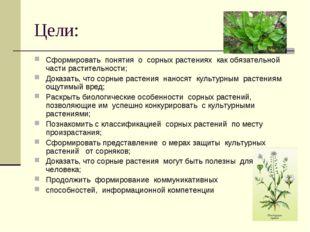 Цели: Сформировать понятия о сорных растениях как обязательной части растител