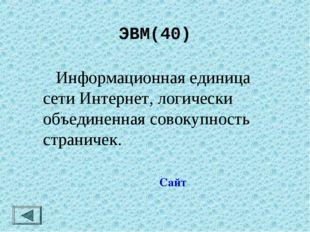 ЭВМ(40)  Информационная единица сети Интернет, логически объединенная совоку