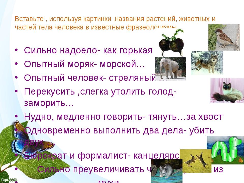Вставьте , используя картинки ,названия растений, животных и частей тела чело...