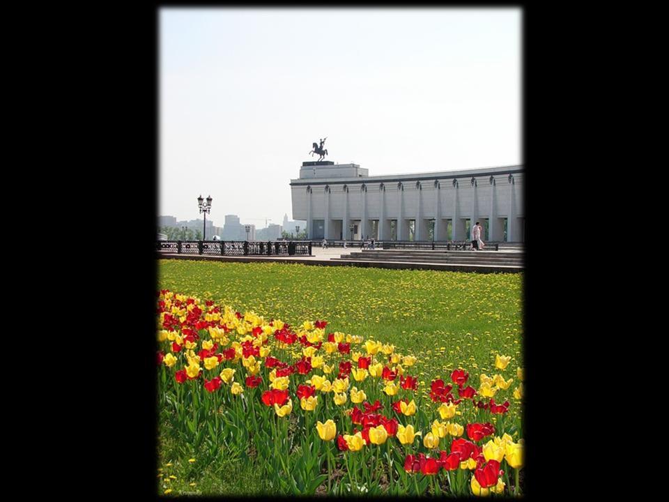 http://festival.1september.ru/articles/605252/presentation/51.JPG