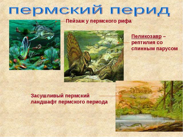 Пеликозавр –рептилия со спинным парусом Пейзаж у пермского рифа Засушливый пе...