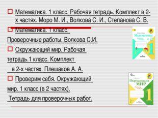 Математика. 1 класс. Рабочая тетрадь. Комплект в 2-х частях. Моро М. И., Волк