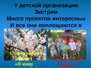 У детской организации Экстрим Много проектов интересных И все они воплощаются