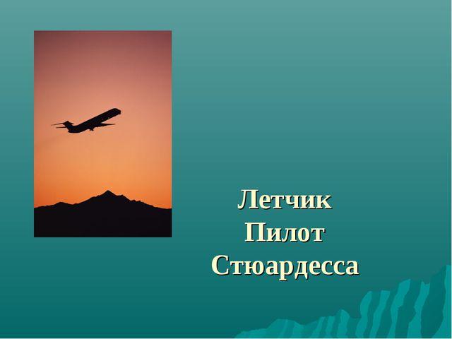 Летчик Пилот Стюардесса