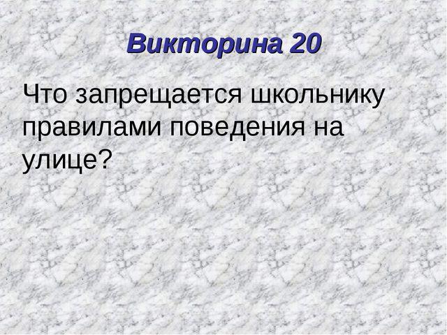Викторина 20 Что запрещается школьнику правилами поведения на улице?