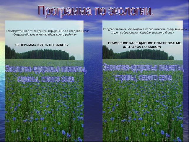 Государственное Учреждение «Приреченская средняя школа Отдела образования Ка...