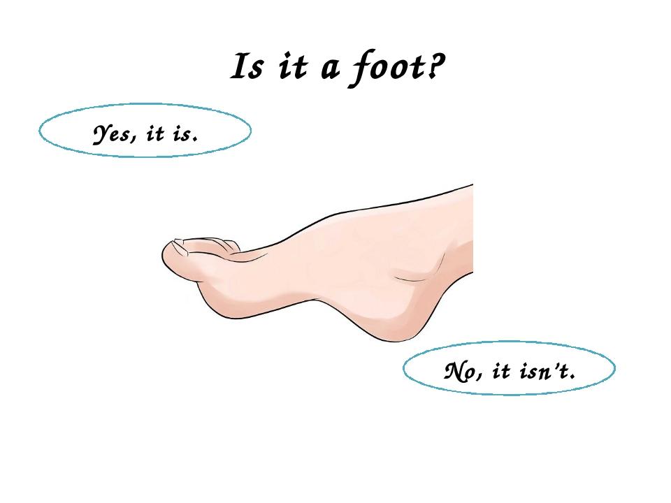 Is it a foot? No, it isn't. Yes, it is.